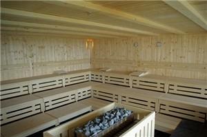 Spa, sauna ou hammam